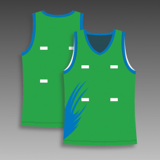 Custom netball jerseys any color
